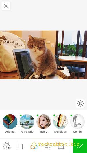 Line Camera App