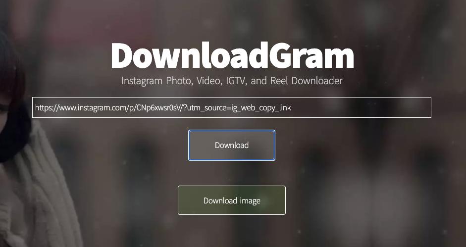 Downloadgram 下載 IG 照片圖片、影片到電腦!教學