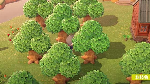 動物森友會 種樹小秘訣