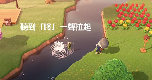 動物森友會釣魚技巧