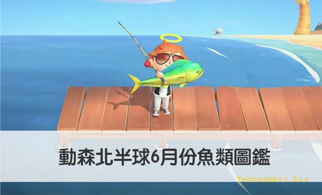 動森北半球6月份魚類圖鑑