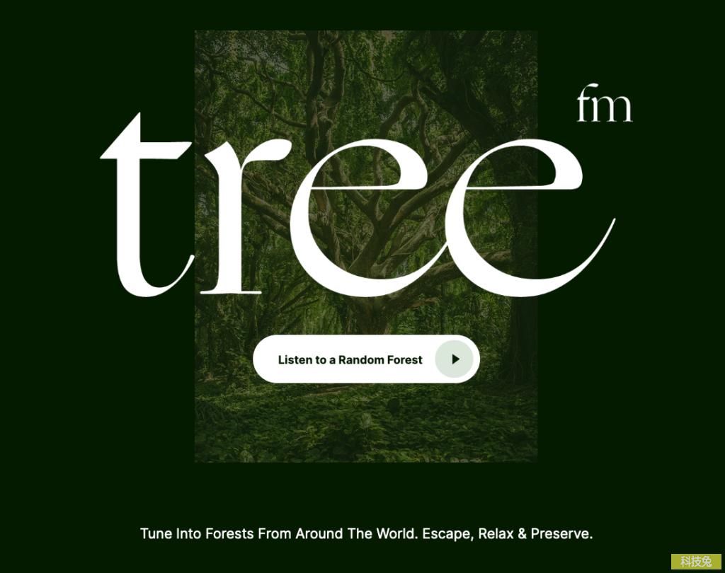tree.fm 樹林深山大自然音樂,可當背景音,支援CC授權