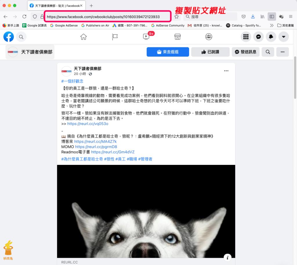 臉書電腦版複製貼文連結網址